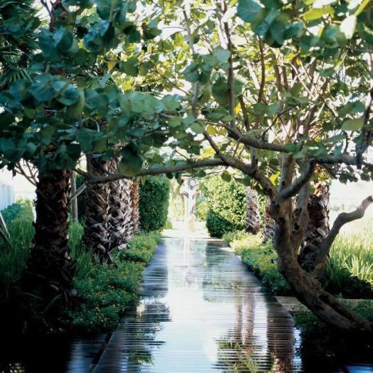standard-hotel-miami-landing-page-gallery-garden-path