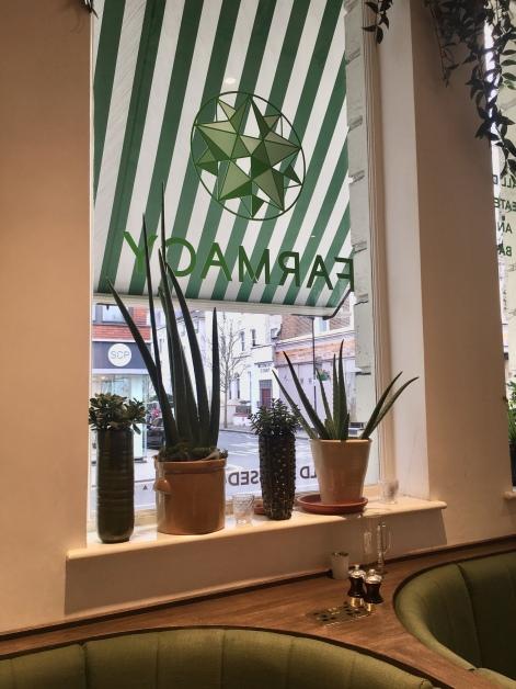 Farmacy_Plant Window