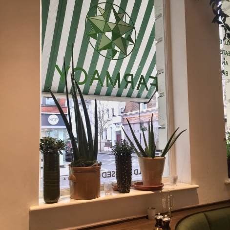 Farmacy_Plant Window